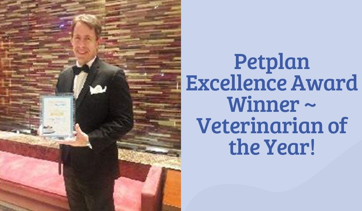 Petplan-excellence-award-winner-veterinarian-of-the-year